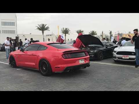MUSTANG55 2019 event in Mina Rashid Marina Dubai