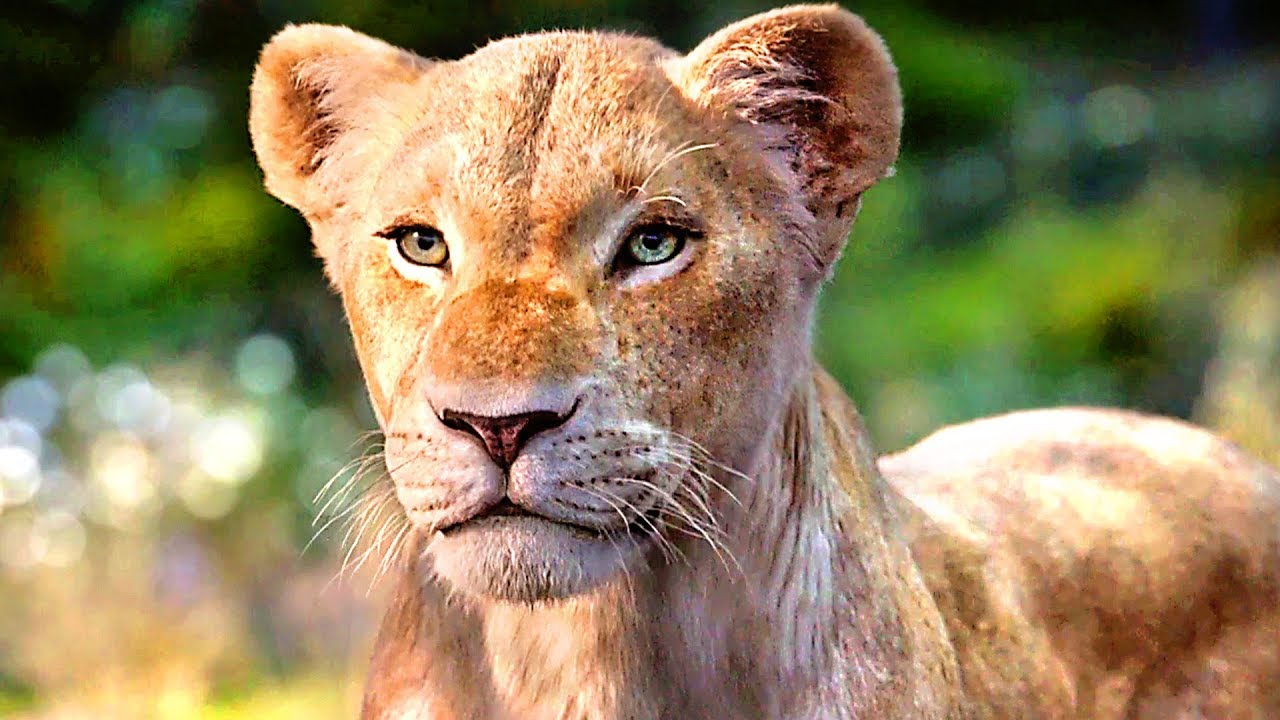 The Lion King Simba Meets Nala Full Trailer 2019