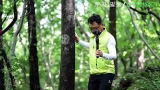 경주 가볼만한곳 건천 편백나무숲 피톤치드가 가득한 산책…