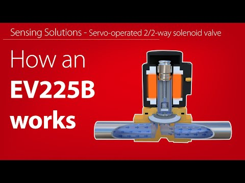 How does an EV225B, Servo-operated 2/2-way solenoid valve for steam work - animation