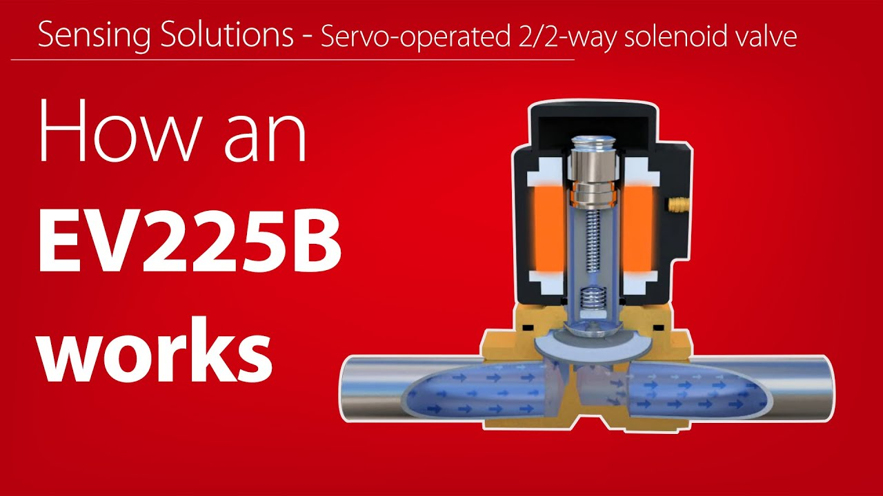How Does An Ev225b  Servo-operated 2  2-way Solenoid Valve For Steam Work - Animation