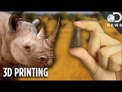 Can 3D Printing Save Rhinos From Extinction?