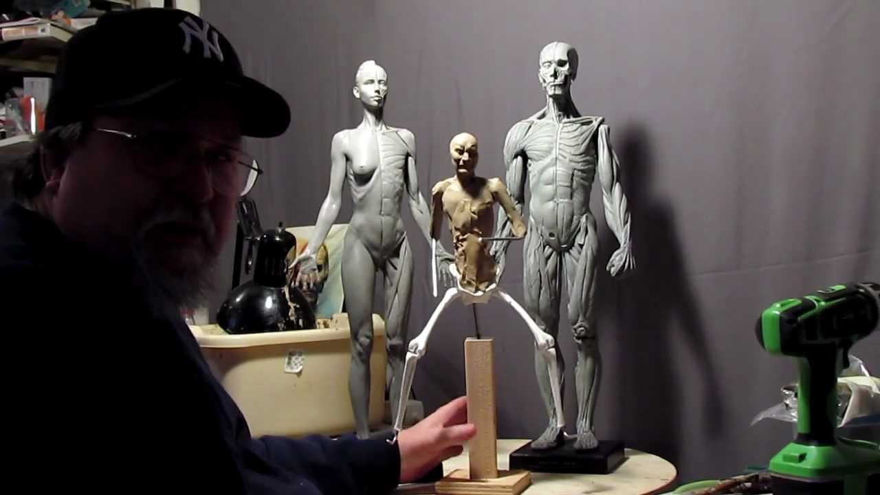 Sculpting Tutorial - Anatomical Correct Female and Male Reference ...