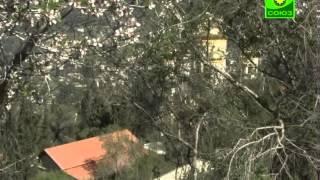 Ситуация вокруг Горненского монастыря в Иерусалиме(Крайне тревожная ситуация сложилась вокруг православного русского Горненского монастыря в Иерусалиме...., 2013-03-15T05:31:32.000Z)