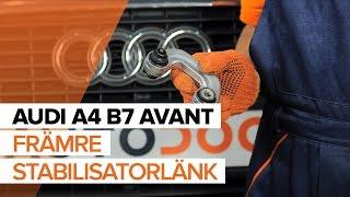 Byta Baklyse vänster och höger på FIAT PANDA 2019 - videoinstruktioner