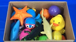 Box of Toys Sea Animals for Children Learn Fun Colors for Babies