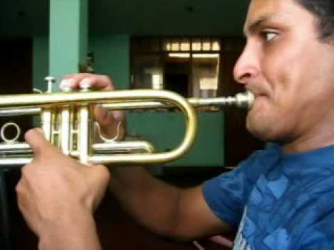 Tecnica de trompeta 2009 -2