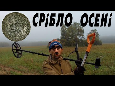 Срібло осені...   #УкраїнськіКопачі #minelab #equinox800