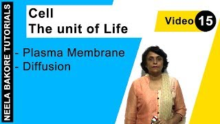 Cell - The unit of Life - Plasma Membrane - Diffusion
