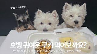 강아지간식 호빵, 찐빵, 바사삭쿠키 슈나우저(schna…