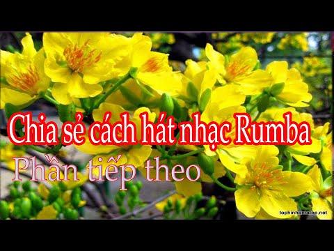 chia sẻ cách hát nhạc Rumba phần tiếp theo