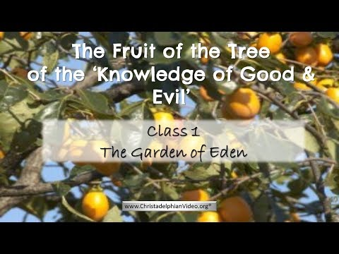 The Fruit of the Knowledge of Good & Evil: Class 1 - The Garden of Eden