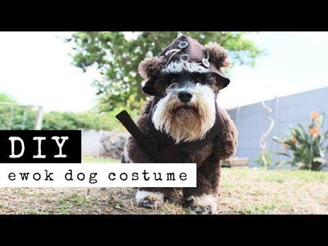 DIY: The Making Of An Ewok Dog Costume | Raylene Harvey ...