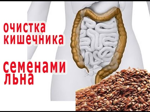 антиногтегриб