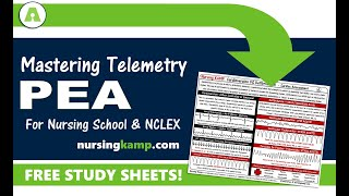 What is PEA Pulseless Electrical Activity Nursing KAMP NCLEX Prep 2019