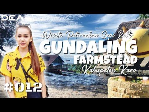 gundaling-farmstead-berastagi---wisata-holtikultura,-peternakan-sapi-&-resto