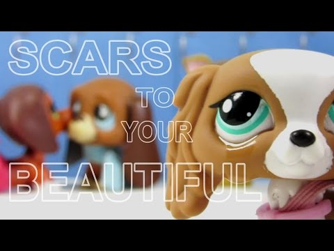 LPS: Scars to Your Beautiful (Alessia Cara) Music...