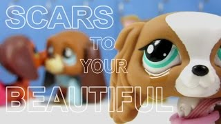 Download Lagu LPS: Scars to Your Beautiful (Alessia Cara) Music Video Mp3