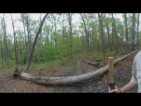 A VR Hike in Folly Lick Park