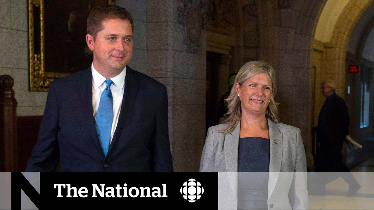 Liberal MP Leona Alleslev defects to Conservative Party