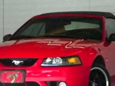 1999 Ford Mustang 2dr Convertible SVT Cobra Convertible - Brandon, FL