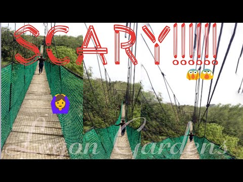 Legon Botanical Gardens|My Experience On A Canopy Walkway|Ac