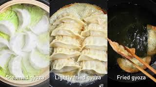 Gyoza dough – making your own gyoza skins