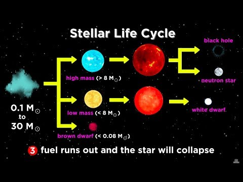 The Life and Death of Stars: White Dwarfs, Supernovae, Neutron Stars, and Black Holes