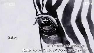 [Vietsub+Kara] Tống Đông Dã 宋冬野 --  Ngựa vằn 斑馬,斑馬