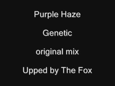 Purple Haze - Genetic (original mix)