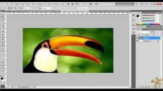 Tutorial Photoshop (Calendário)