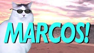HAPPY BIRTHDAY MARCOS! - EPIC CAT Happy Birthday Song