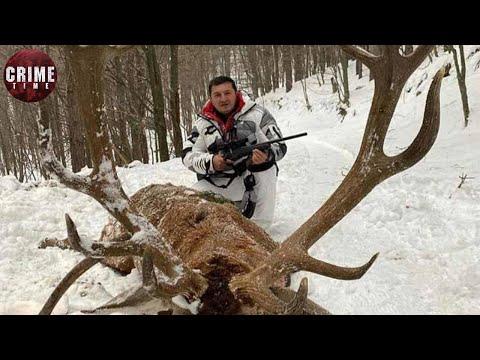 Гули на охоте