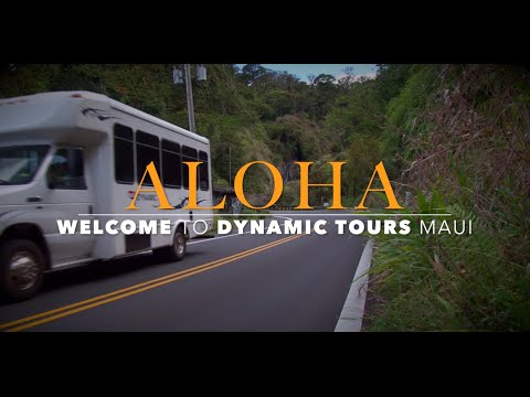 Road to Hana Full-Day Tour with Outdoor Picnic Styled Lunch - Video
