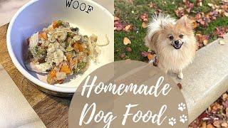 What I Feed My Pomeranian HEALTHY + EASY