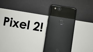 Pixel 2 Review! King of the Small Smartphone