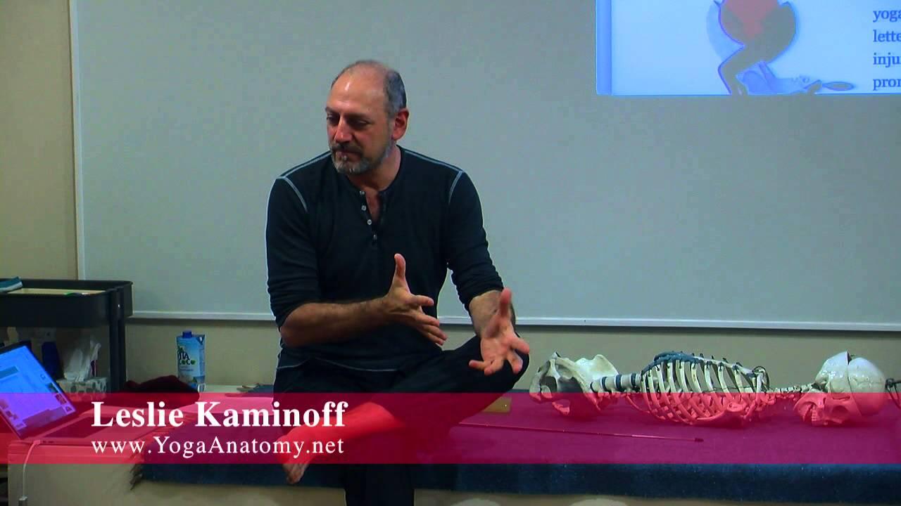 Yoga Anatomy Kaminoff Choice Image - human body anatomy