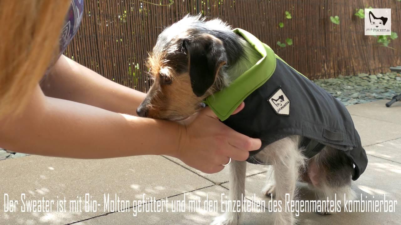Pick-Pocket Hundemantel Baukastensystem - YouTube