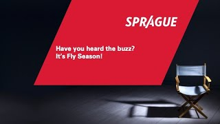 Have you heard the buzz? It's Fly Season!