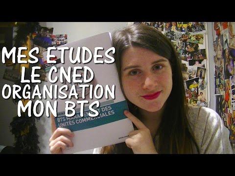 Mes études par correspondance (CNED) + Mon Organisation ♥