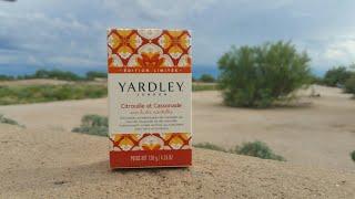 yardley of London pumpkin and brown sugar bar soap