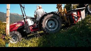 LB Harvest - Video Promo 2020