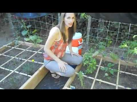Square Foot Gardening:What NOT To Do