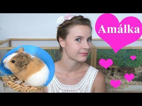 Překvapení: Přivítejte Amálku! (vlog) from YouTube · Duration:  10 minutes 17 seconds