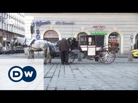 Austria decides - The populist challenge | DW Reporter