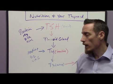 Nutrition Functional Medicine Approach to Thyroid Problems