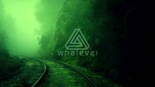 WHATEVER  |  MAX MELVIN