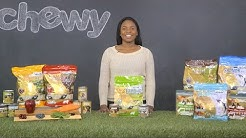 Addiction Dog Food | Chewy