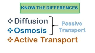 Cell Transport| Diffusion, osmosis, active transport