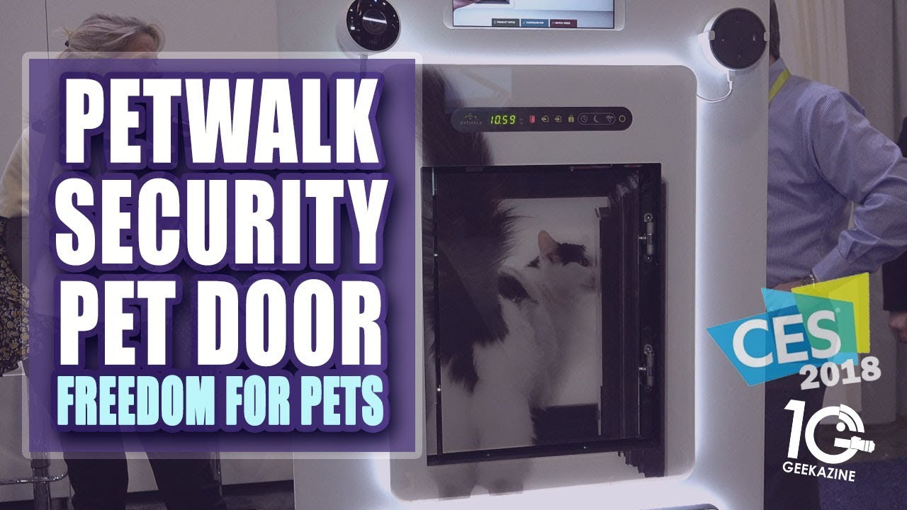 The Petwalk Pet Door Is A Smart Door For Your Pets And More Youtube